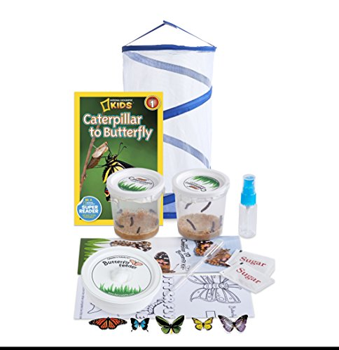 Nature Gift Store Live Butterfly Growing Kit: Shipped WITH 10 Live Caterpillars NOW, Pop-Up Cage, Book and Stickers BUNDLE by Nature Gift Store