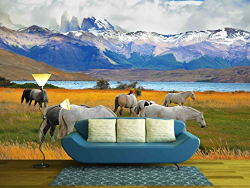 Beautiful White and Gray Horses Grazing in a Meadow near the Lake on the Horizon Towering Cliffs Torres Del Paine