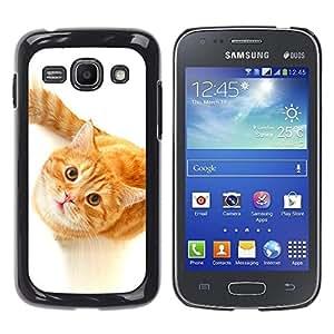 YiPhone /// Prima de resorte delgada de la cubierta del caso de Shell Armor - Cute Curious Orange Cat - Samsung Galaxy Ace 3 GT-S7270 GT-S7275 GT-S7272
