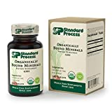 Cheap Standard Process – Organically Bound Minerals – Promotes Healthy Connective Tissues and Cellular Energy Production, Healthy Enzyme Function, Gluten Free and Vegetarian – 180 Tablets