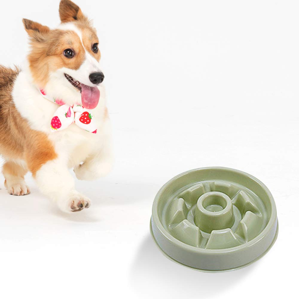 Green Dog Bowl Slow Feeder Anti Gulp Pet Foraging Bowl to Slow Eating for Puppy Cat (Green)