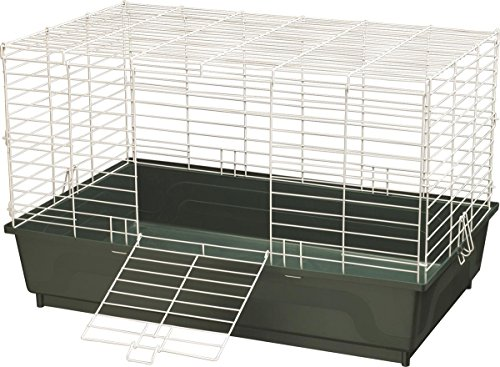 Kaytee My First Home Cage for Rabbits, Large Green, Single Pack (Cage First Home)
