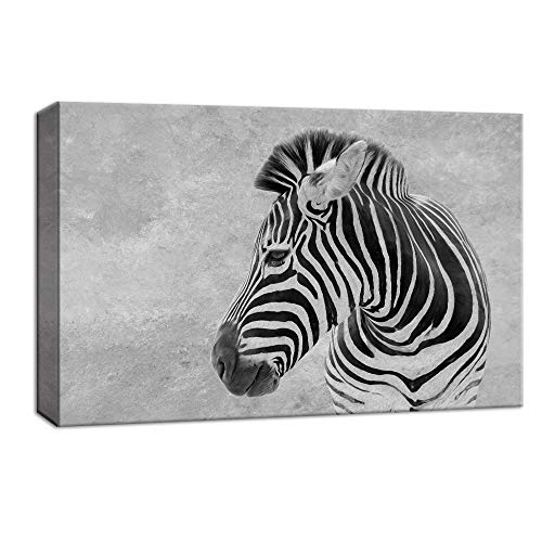(NWT Canvas Wall Art Wild Life Zebra Painting Artwork for Home Decor Framed - 16x24 inches)