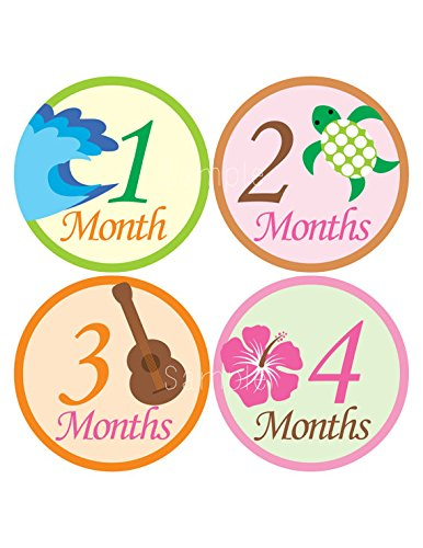 Aloha Baby Wall (Set of 12 Month 2 Month Baby Aloha Girl Collection Monthly Stickers)
