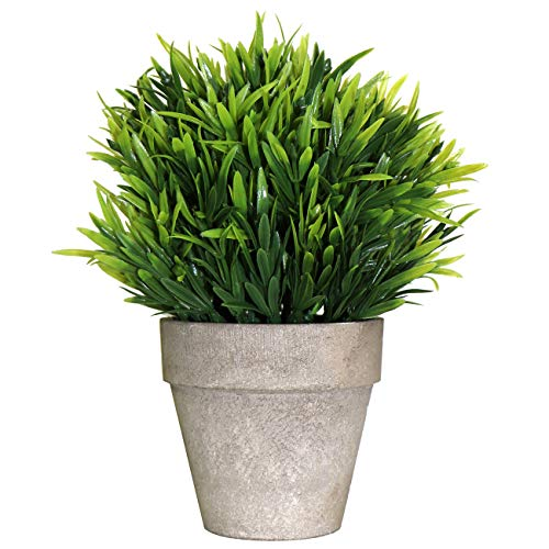 Beebel Artificial Plants Mini Topiary Shrubs Potted Grass Faux Fake Plant for Home House Bathroom Table Decor (QCC - Grass/Gray Pot)