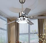 RainierLight Modern Ceiling Fan 5 Stainless Steel Blades Remote Control LED 3 Changing Light for Indoor Mute Energy Saving Electric Fan
