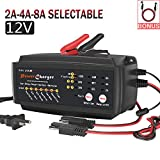 12V 2/4/8A Battery Charger Maintainer Auto Trickle Float Deep Cycle 7 Steps Charging