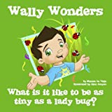 Wally Wonders - What is it like to be as tiny as a ladybug?