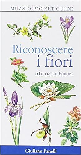 Fiori Italia.Riconoscere I Fiori D Italia E D Europa 9788874131150 Amazon Com