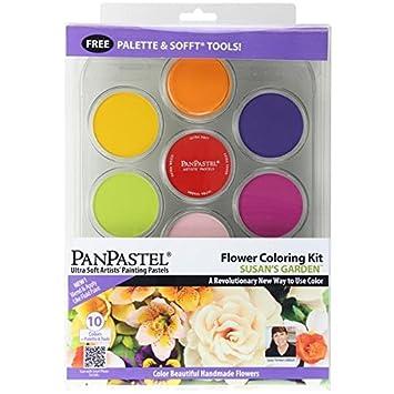 Panpastel çiçek Boyama Kit 1 10 Renk Aksesuarl Amazoncomtr