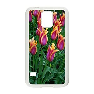 Unique Design -ZE-MIN PHONE CASE- For Samsung Galaxy S5 -Beautiful Holland Tulip Flower-CUSTOM-DESIGH 8