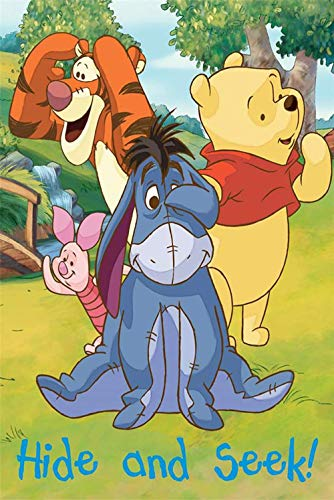 (Disney Winnie the Pooh, Piglet, Eeyore, and Tigger Club House Gangs All Here Silk Touch Sherpa Blanket, Measures 40 by 50 inches)