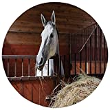 Round Rug Mat Carpet,Horse Decor,Young Mare Eating Hay in Stable Rustic Barn Ranch House Decorative,Dark Olive and Green,Flannel Microfiber Non-slip Soft Absorbent,for Kitchen Floor Bathroom