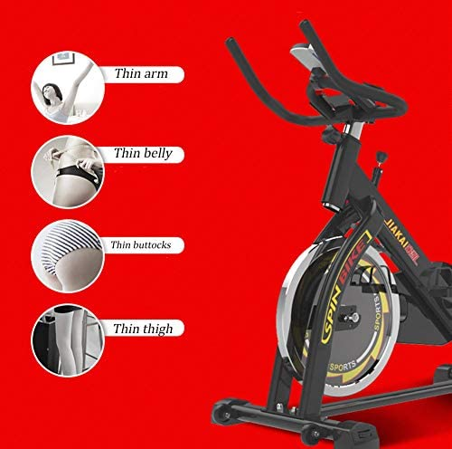 BF-DCGUN Bicicleta de Ejercicio silenciosa para Interiores ...