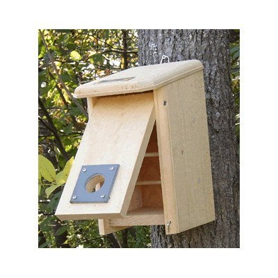 Winter Roost Box. Easily Converted to a Nest Box in the Spring.