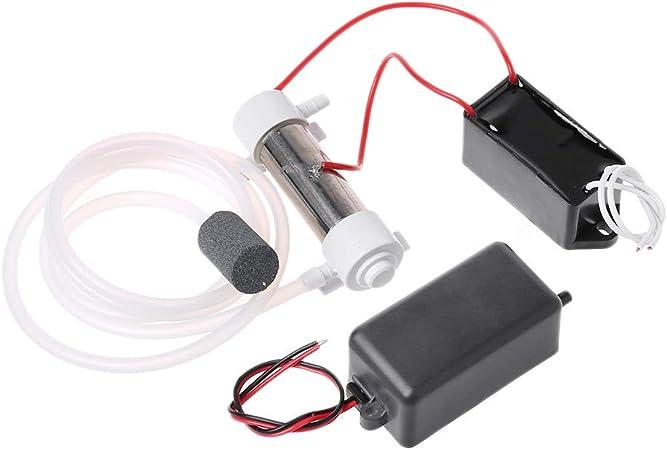Bilinli AC220V 500mg Kit de generador de ozono Ozono Agua Purificador de Limpieza de Aire Esterilizador Desinfector ...