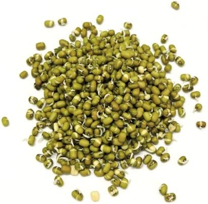 Sproutamins Green Gram Sprouts, 200g