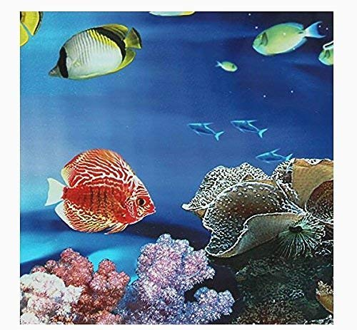 Beito Fondo del Tanque del Acuario con el mar Azul, Peces de Acuario océano Paisaje del Cartel: Amazon.es: Productos para mascotas