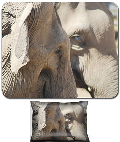 Liili Mouse Wrist Rest and Small Mousepad Set, 2pc Wrist Support couple of asian elephants in love close up animal family pair IMAGE ID 14219493