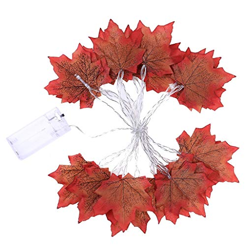 Glumes Fall Maple Leaf Garland 20 LED Maple Leaves Fairy Lights 9.84 Feet Fall Garland Lights Waterproof Maple Leaf String Lights 2AA Battery( not include) Powered Lighted Garland for Party Thanksgiving Decor