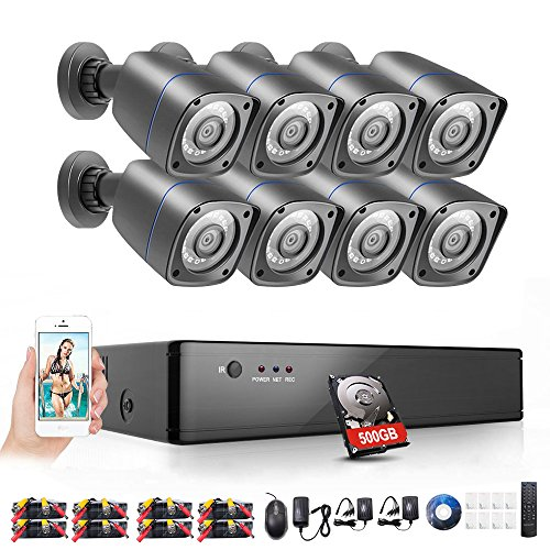 Rraycom 8CH Security Camera System 1080H DVR Reorder with 500GB Hard Drive and (8) HD 2000TVL Outdoor CCTV Cameras with IP66 Weather Proof and Motion (Hdd Motion Detection)
