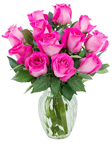 KaBloom Sweet Pink Bouquet of 12 Fresh Cut Pink Roses (Farm-Fresh, Long-Stem) with Vase