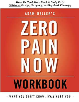 Adam Heller's Zero Pain Now Workbook