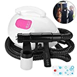 2-IN-1 Spray Tan Machine and whitening Tool, Tanning Sprayer + 2.5M PVC Tube Accessories Spray Tan Kit with Heating Function for Sunless Tanning Self-tanners Whitening Hydrating(us plug)