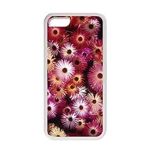 Fresh Flower Daisy Fresh Flower White Phone Case for iPhone 5 5s