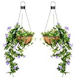 Pair of 26cm Purple Artificial Duranta Flower Hanging Basket with Solar Lights & Chain by Primrose
