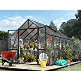 STC Clear View Black Frame Greenhouse, 8 by 12-Feet