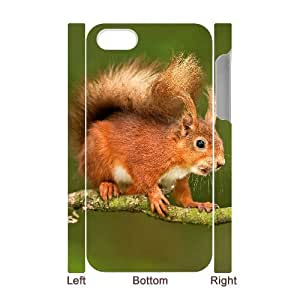 ALICASE Diy 3D Protection Hard Case Squirrel For Iphone 5C [Pattern-3]