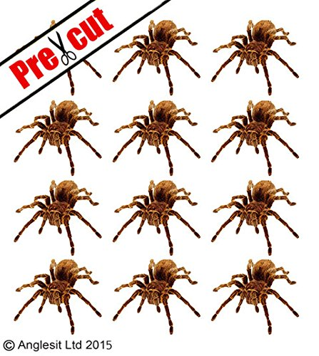 BROWN TARANTULA SPIDER EDIBLE RICE /WAFER PAPER CUP CAKE TOPPERS BIRTHDAY PARTY DECORATION A13 (12) by Halloween (Image #2)