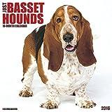 2016 Just Basset Hounds Wall Calendar
