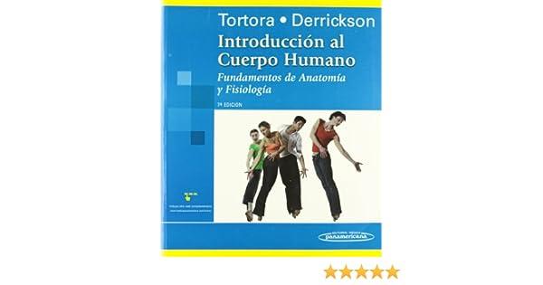 Introducción al cuerpo humano / Introduction to the Human Body ...