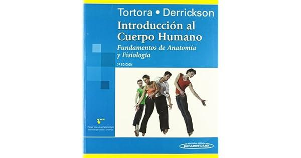Perfecto Fundamentos De La Anatomía Y La Fisiología Quinta Edición ...