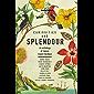 Curiosities and Splendour (Lonely Planet Travel Literature)