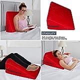 MUMMUMUM Carry Easily Adult Pillow for