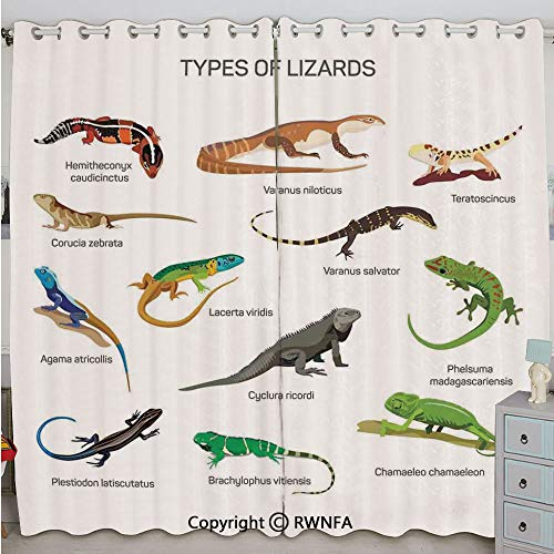 Justin Lizard - Justin Harve window Lizard Family Design Primitive Reptiles Camouflage Exotic Creatures Home Design Decorative Custom Blackout Curtains Set of 2 Panels(100