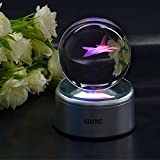3D Crystal Ball Fancy LED Lighting with Rotating Base, Advanced Laser Engraving, Ideal Present for Kids, Friends, Perfect for Home, Offices, Bars Decor etc. - 80mm, Fighter