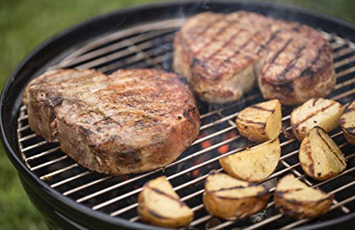 Weber Holzkohlegrill Smokey Joe Premium : Weber 40020 smokey joe premium 14 inch portable grill available in