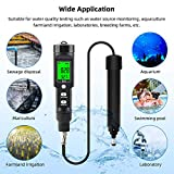 RCYAGO Portable Dissolved Oxygen and Temperature