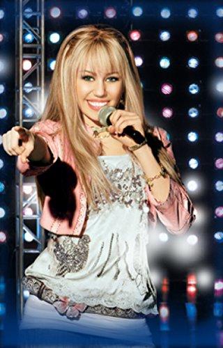 Torrent Town Hannah Montana 24X36 Poster Rare Print #TTG444881