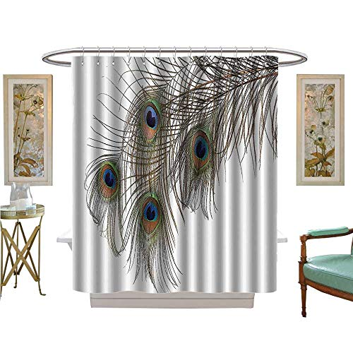 UHOO2018 Shower Curtains Fabric eather of Peacock Power Animal Rising Out of The Ashes Symbol Creature Artsy Bathroom Decor Set with Hooks