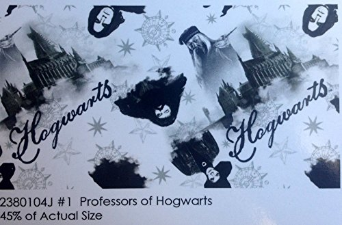 Harry Potter Professors Of Hogwarts Cotton Fabric by Harry Potter Professors of Hogwarts
