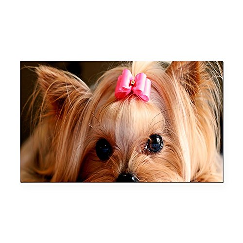 CafePress - Yorkie Greeting Rectangle Car Magnet - Rectangle Car Magnet, Magnetic Bumper -