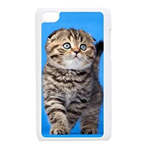 AKERCY Scottish Fold Cat Phone Case For Ipod Touch 4 [Pattern-4]