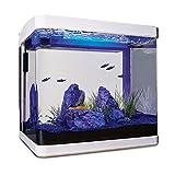 Imagitarium Freshwater Cube Aquarium Kit, 5.2 GAL