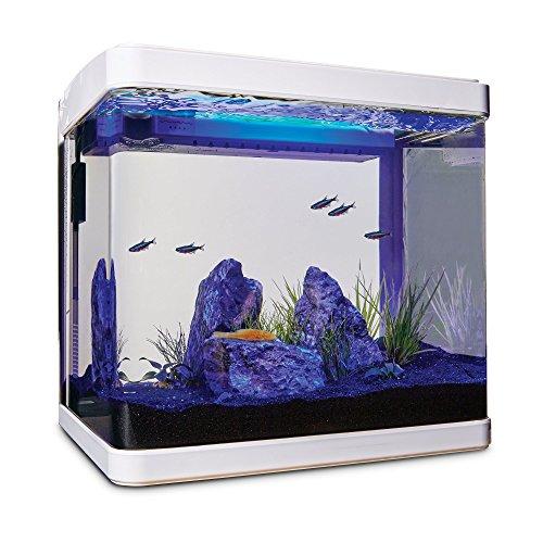 Imagitarium Freshwater Cube Aquarium Kit, 5.2 GAL by Imagitarium