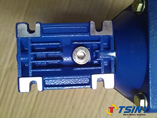 TSINY High Torque 12V DC Worm Geared 100W Motor 90RPM With Gearboxes Ratio 20/1